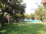 Jardín y Alberca